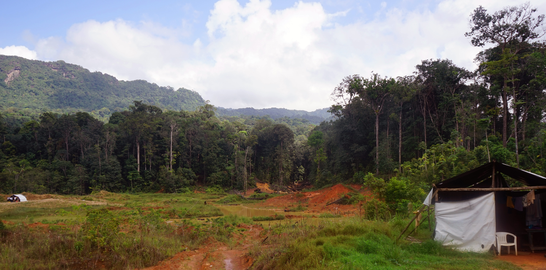 Región de Guyana 8