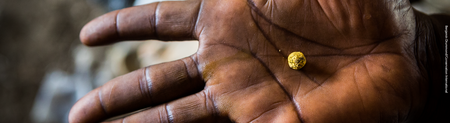 resource library image - hand with gold