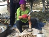 Minera indonesia triturando mineral
