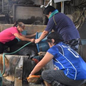 Mujeres mineras que trabajan en una planta procesadora en Itogon, Benguet