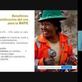 Imagen en miniatura de la grabación de la presentación del taller virtual planetGOLD Perú