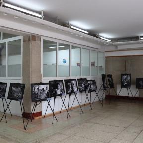 planetGOLD Imágenes de exposición fotográfica de Mongolia Minamata