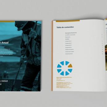Informe anual 2020 - planetGOLD Perú