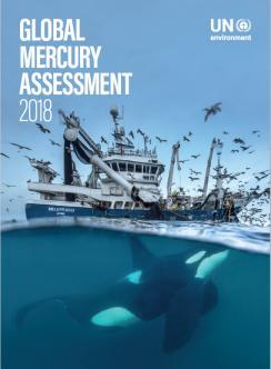 Evaluación global de mercurio