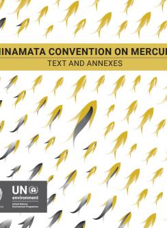 Minamata Convention on Mercury