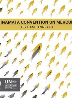 Convención de Minamata sobre el Mercurio