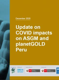 Cover image for planetGOLD Peru December 2020 COVID-19 update