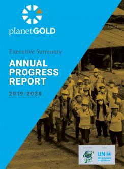 planetGOLD 2019 2020 Annual Report Executive Summary cover image