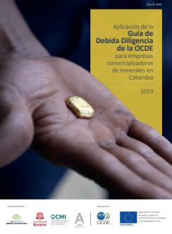 Aplicación de la Guía de la Debida Diligencia de la OCDE