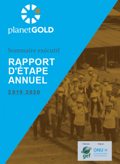 planetGOLD Annual Report Executive Summary cover image French
